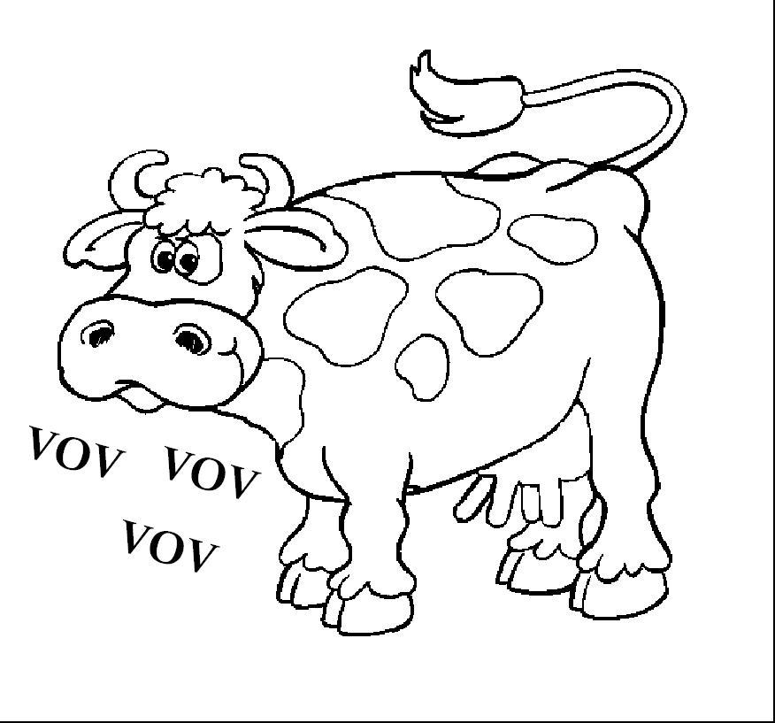 hvad siger koen seksueltforhold